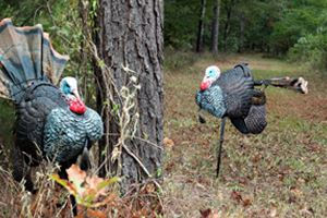 Motion Turkey Decoy