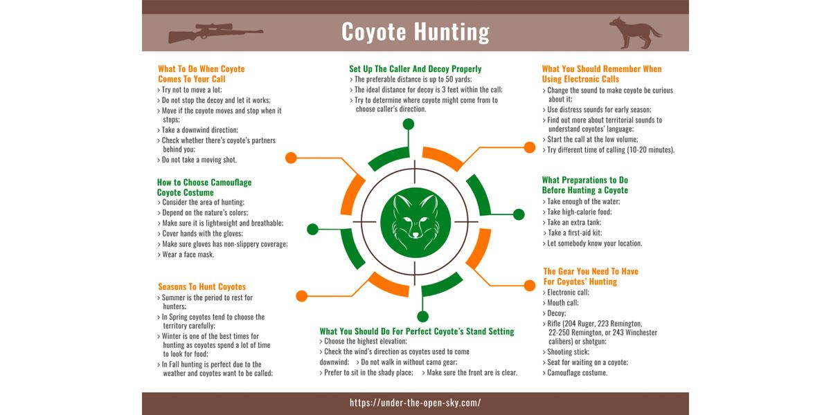 3d3d03c10fda1 What you need to know about coyote hunting - [INFOGRAPHIC]