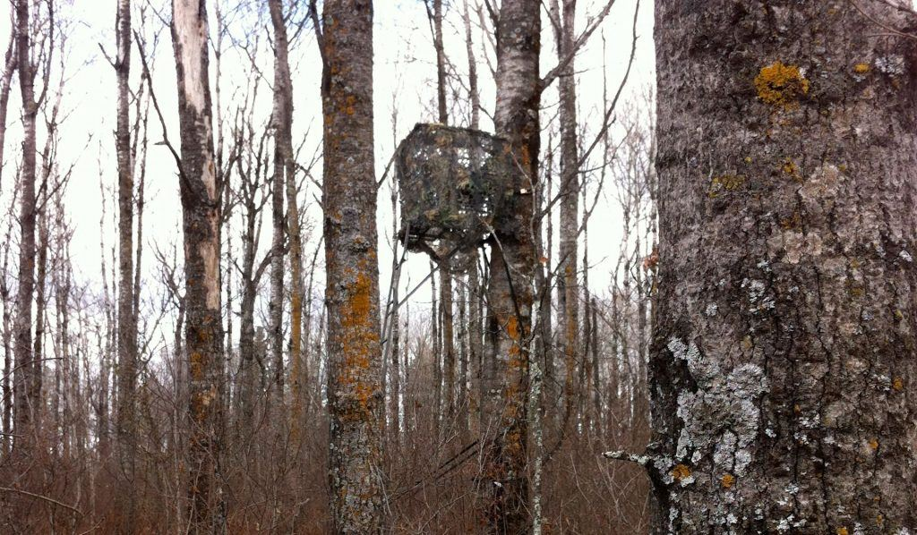 tree stand tips