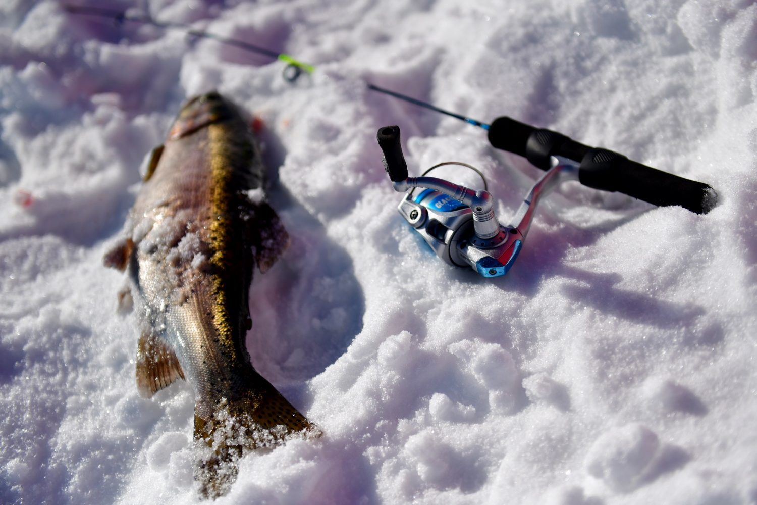 Go at the Right Time for Winter Fishing