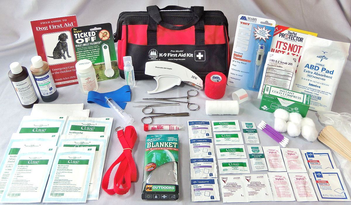 prepare a first aid kit for your pet