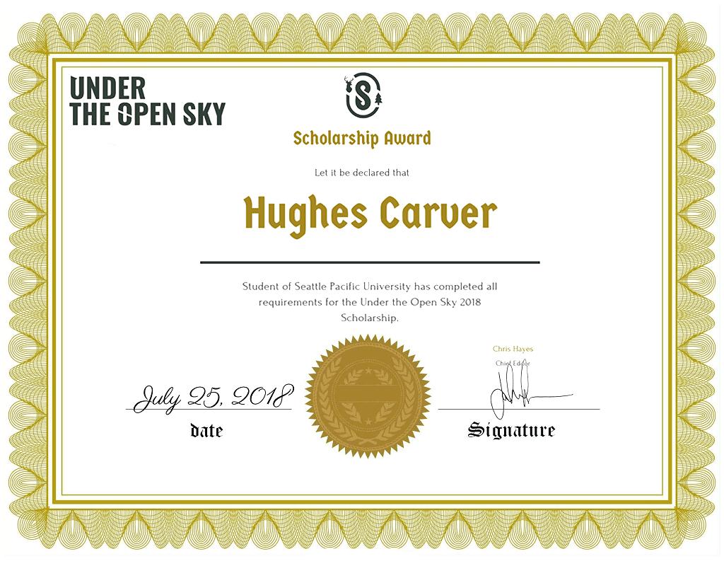 2018 Under the open sky scholarship