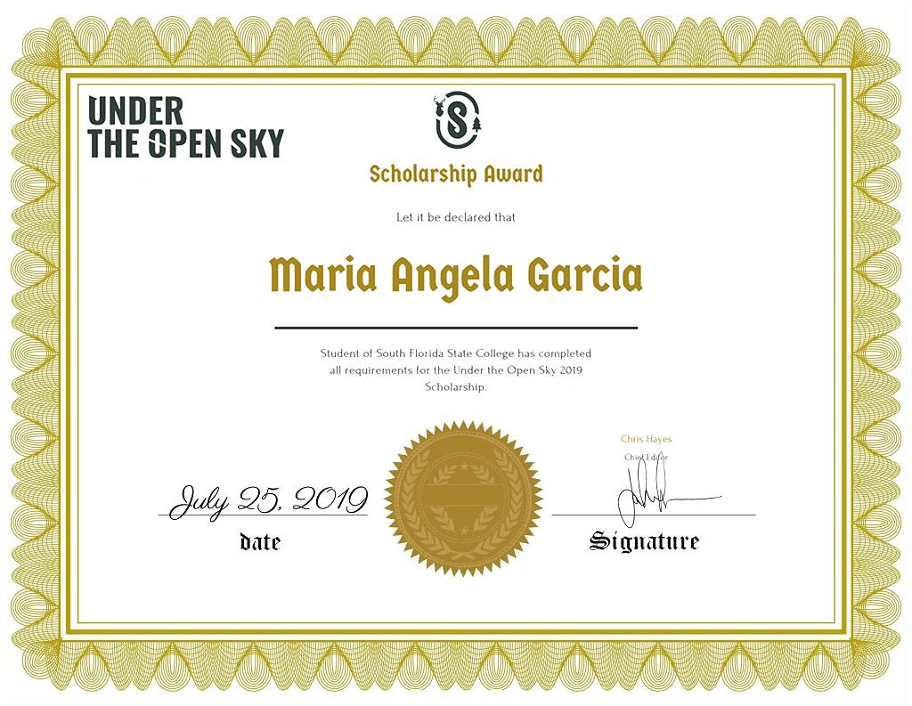 2019 under the open sky scholarship