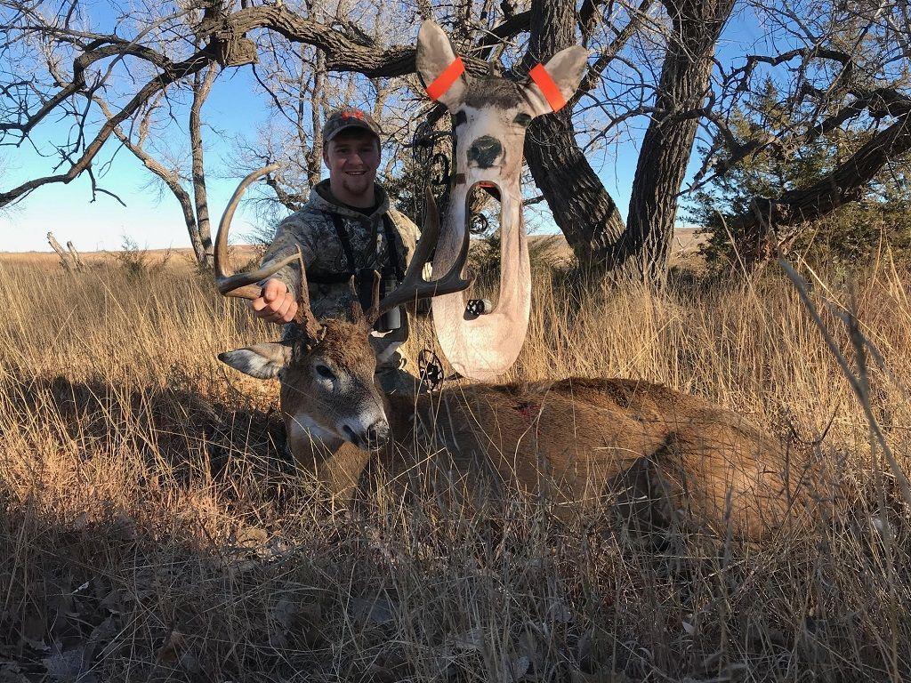 Do Deer Decoys Really Work