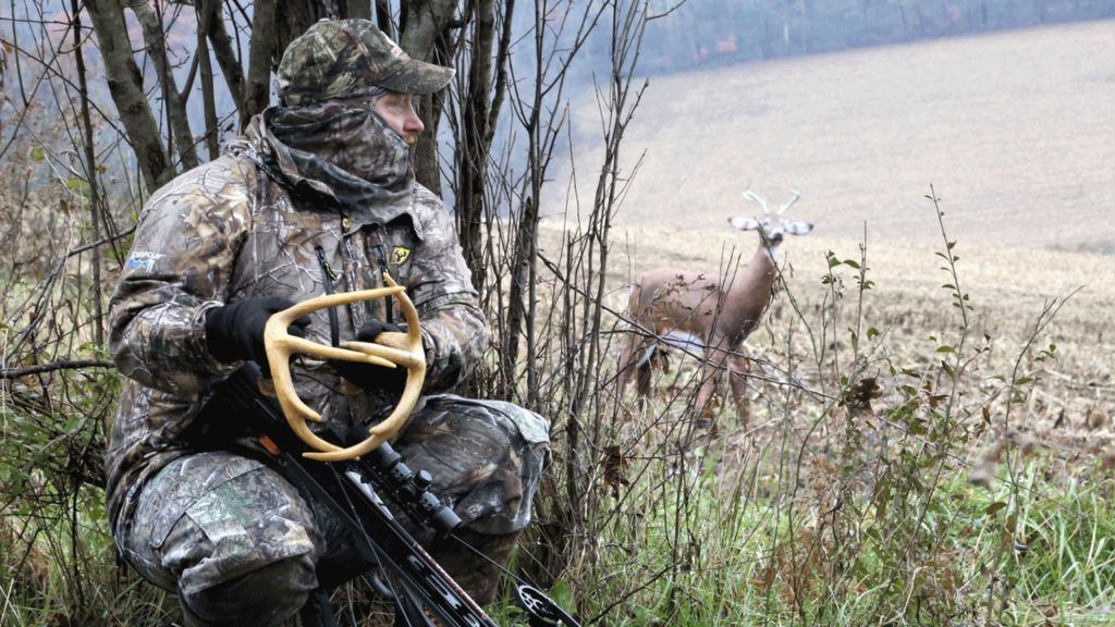 How to Use a Deer Decoy Effectively
