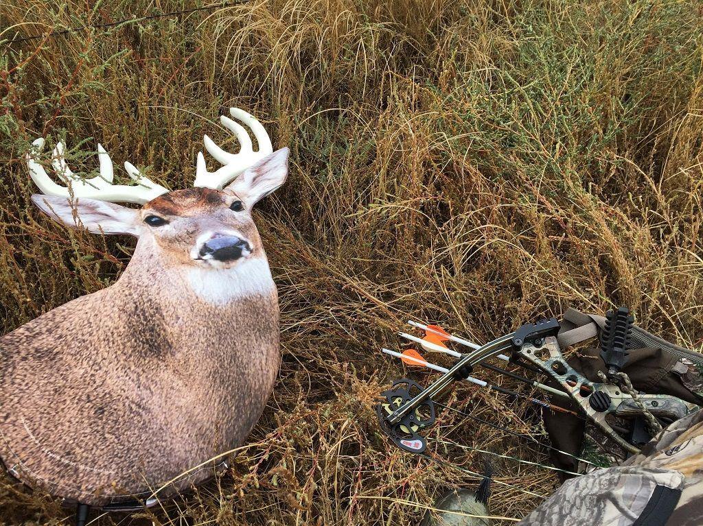 mistakes using deer decoy