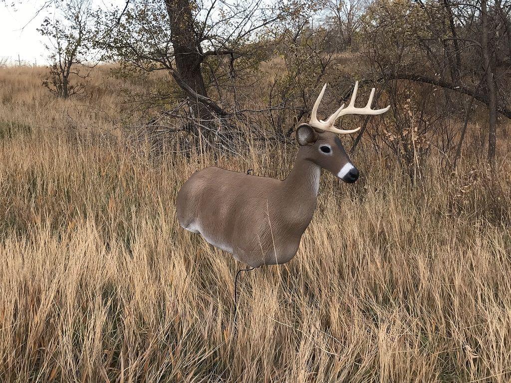 realistic deer decoy