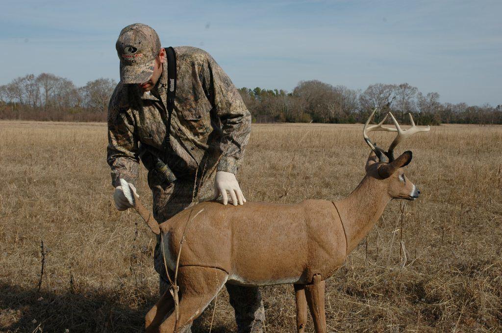 usage of a deer decoy