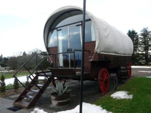 Glamping Campervans or Trailers