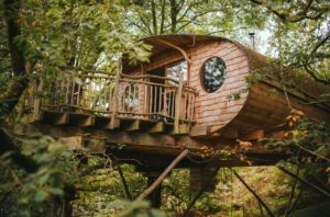 Glamping Luxury Tree Houses