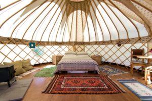 Glamping Yurts